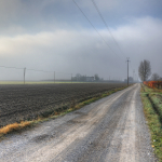 Dirt Road - Nonantola, Modena, Italy - November 17, 2011